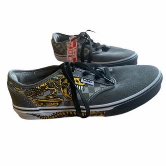 Vans NWT Vans Atwood Kids Dino Skate Shoes