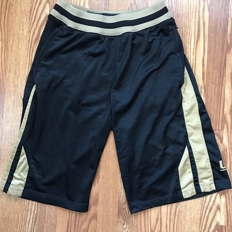 Nike Nike Lebron Signature Collection Shorts Size US 34  EU 50 ...