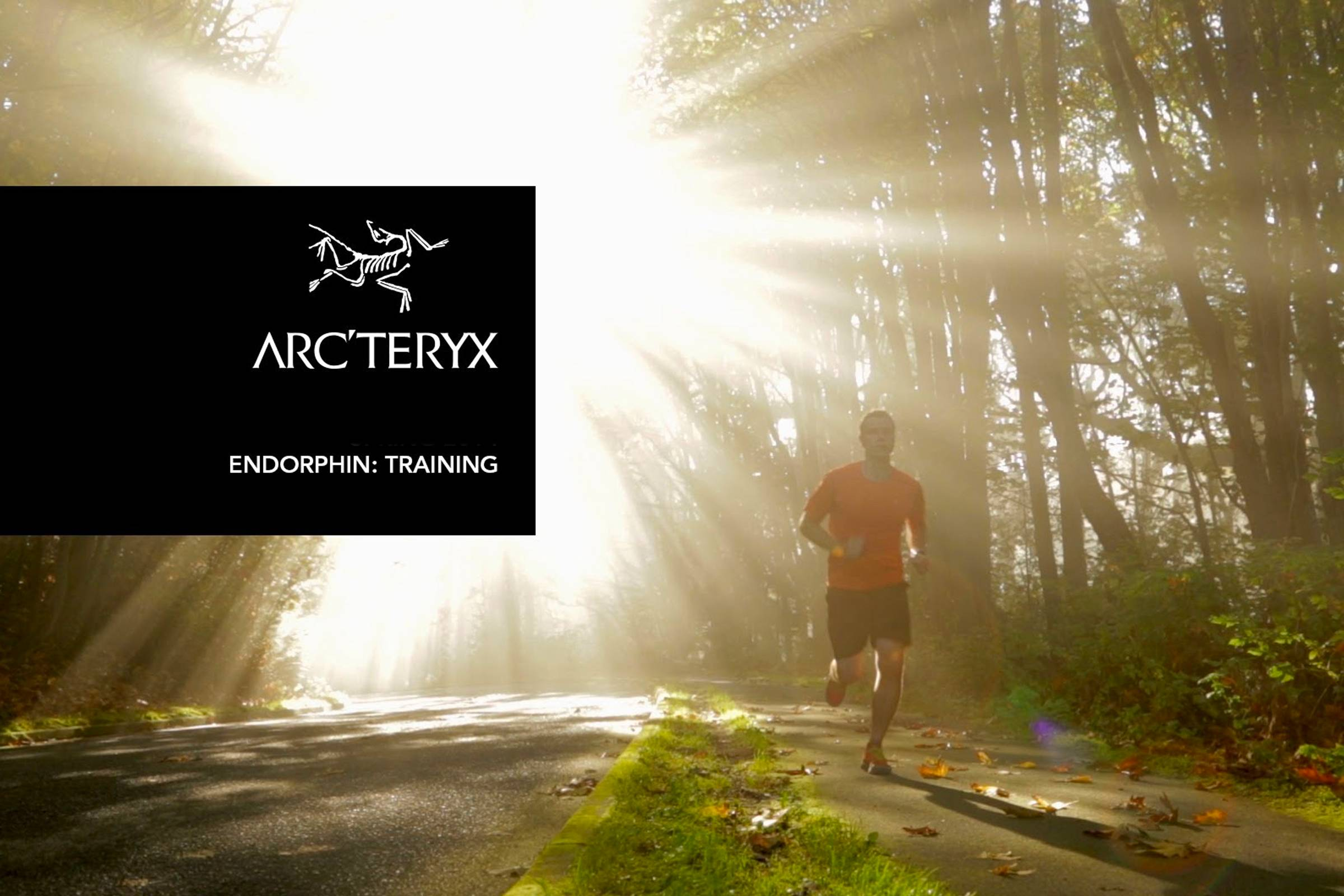 Arc'teryx Endorphin and Traverse