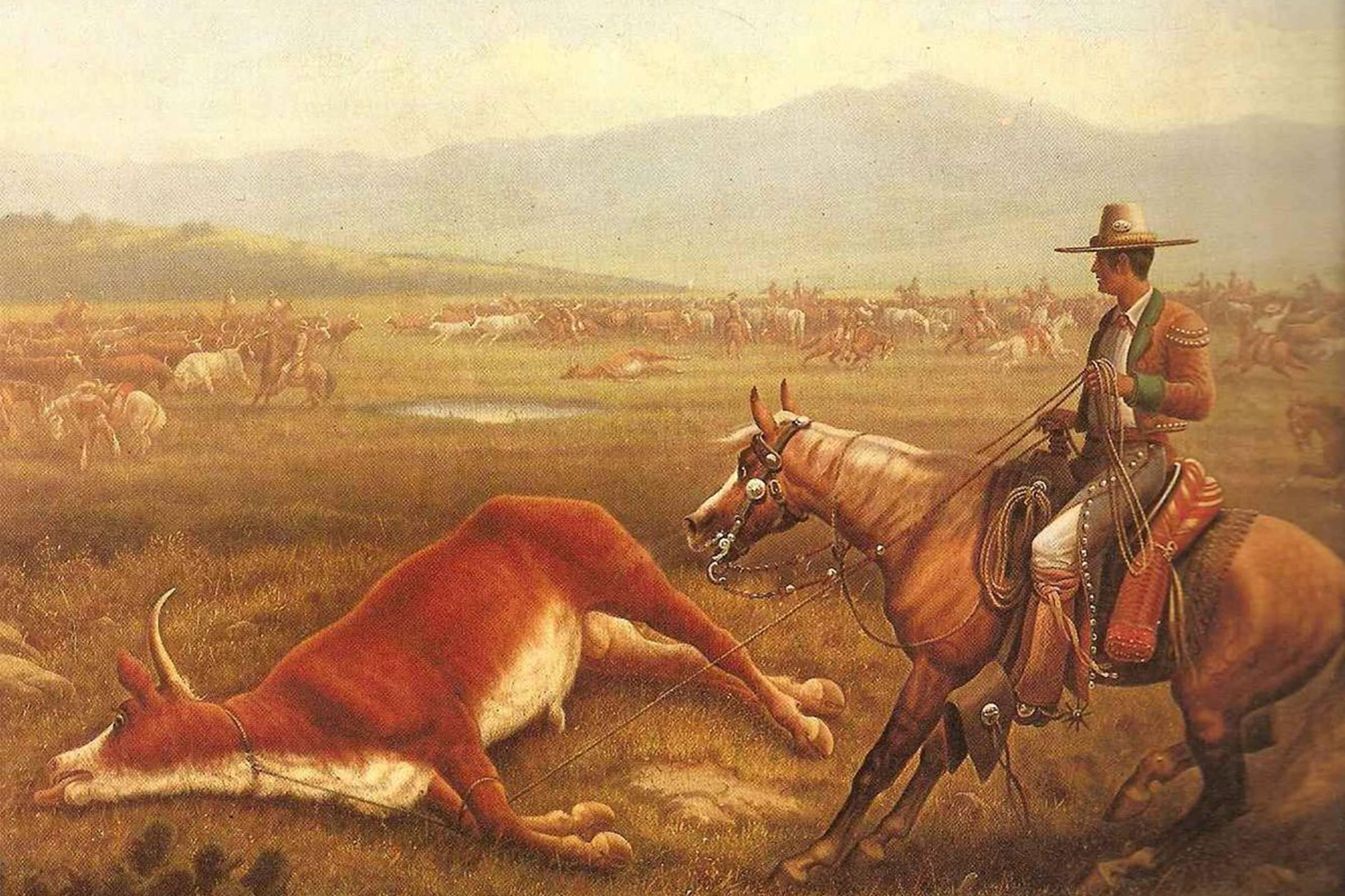 Vaquero riding culture